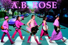 Beatles-abbey-road-parodie-30