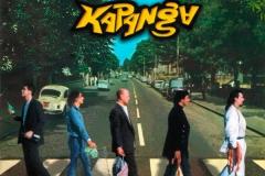 Beatles-abbey-road-parodie-34