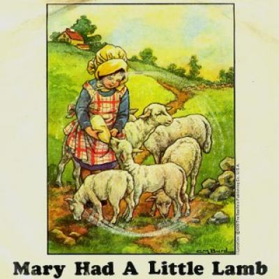 Mary Had A Little Lamb - Paul McCartney : les secrets de l'album (paroles, tablature)
