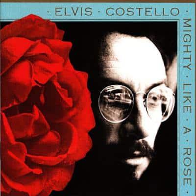 ELVIS COSTELLO - Migthy Like A Rose (1991) - Les collaborations discographiques de Paul McCartney : les secrets de l'album (paroles, tablature)