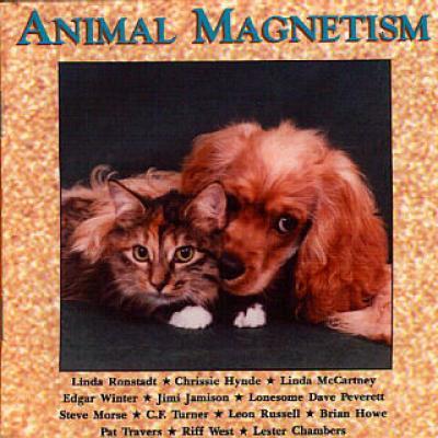 Animal Magnetism (1994) - Les collaborations discographiques de Paul McCartney : les secrets de l'album (paroles, tablature)